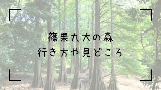 篠栗九大の森Top